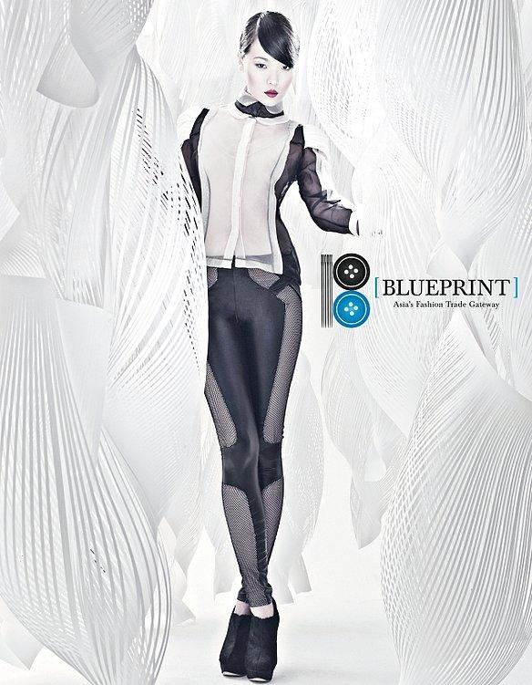 Blueprint 2011 | Red Dot Design Award