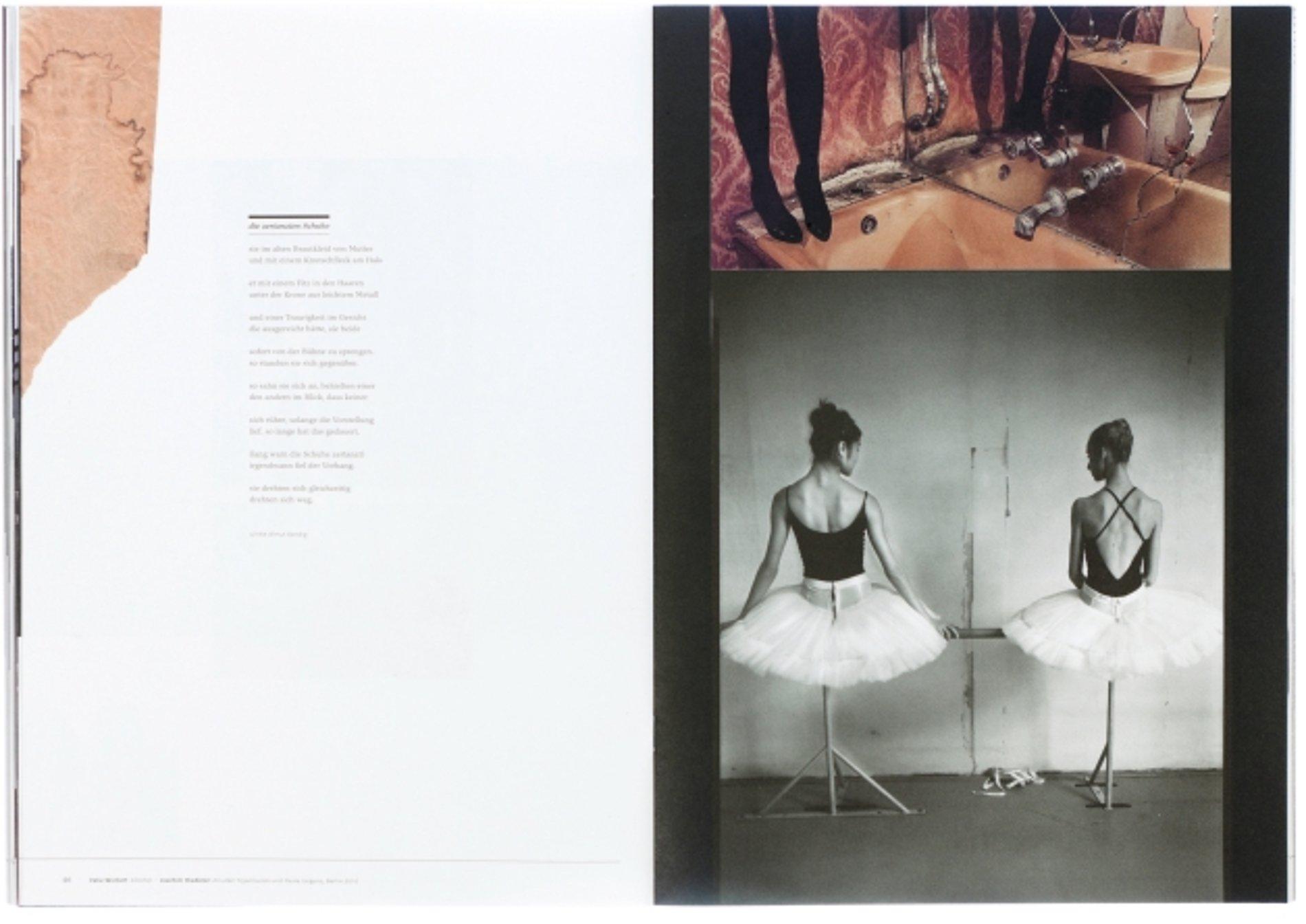 Der Greif – Magazin für Fotografie und Literatur | Red Dot Design Award