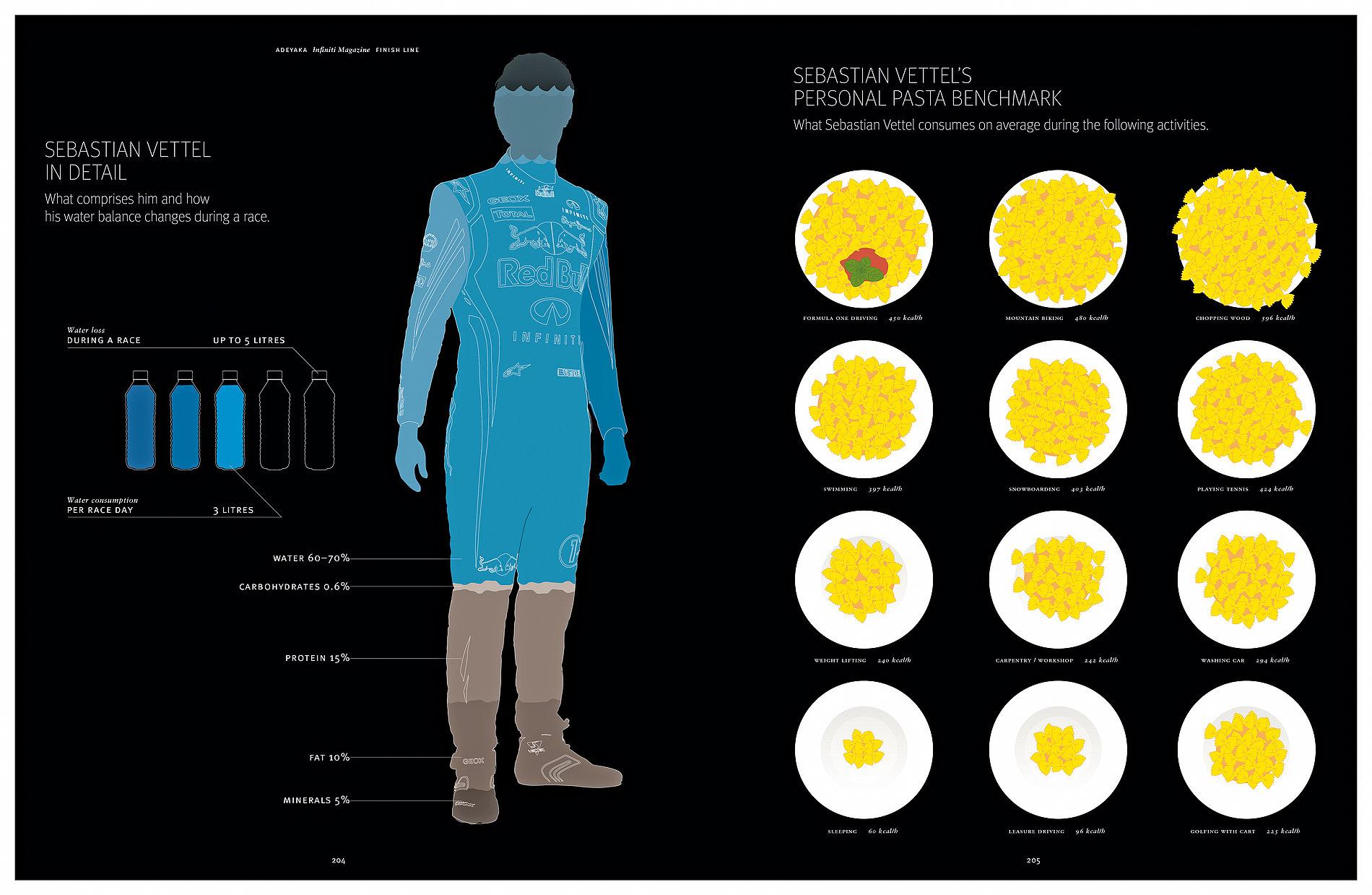 The Beautiful Side  of the Formula One 2011 Season | Red Dot Design Award