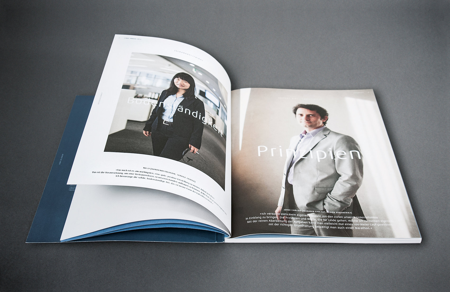 Entschlossenheit Determination Linde Annual Report 2012 | Red Dot Design Award