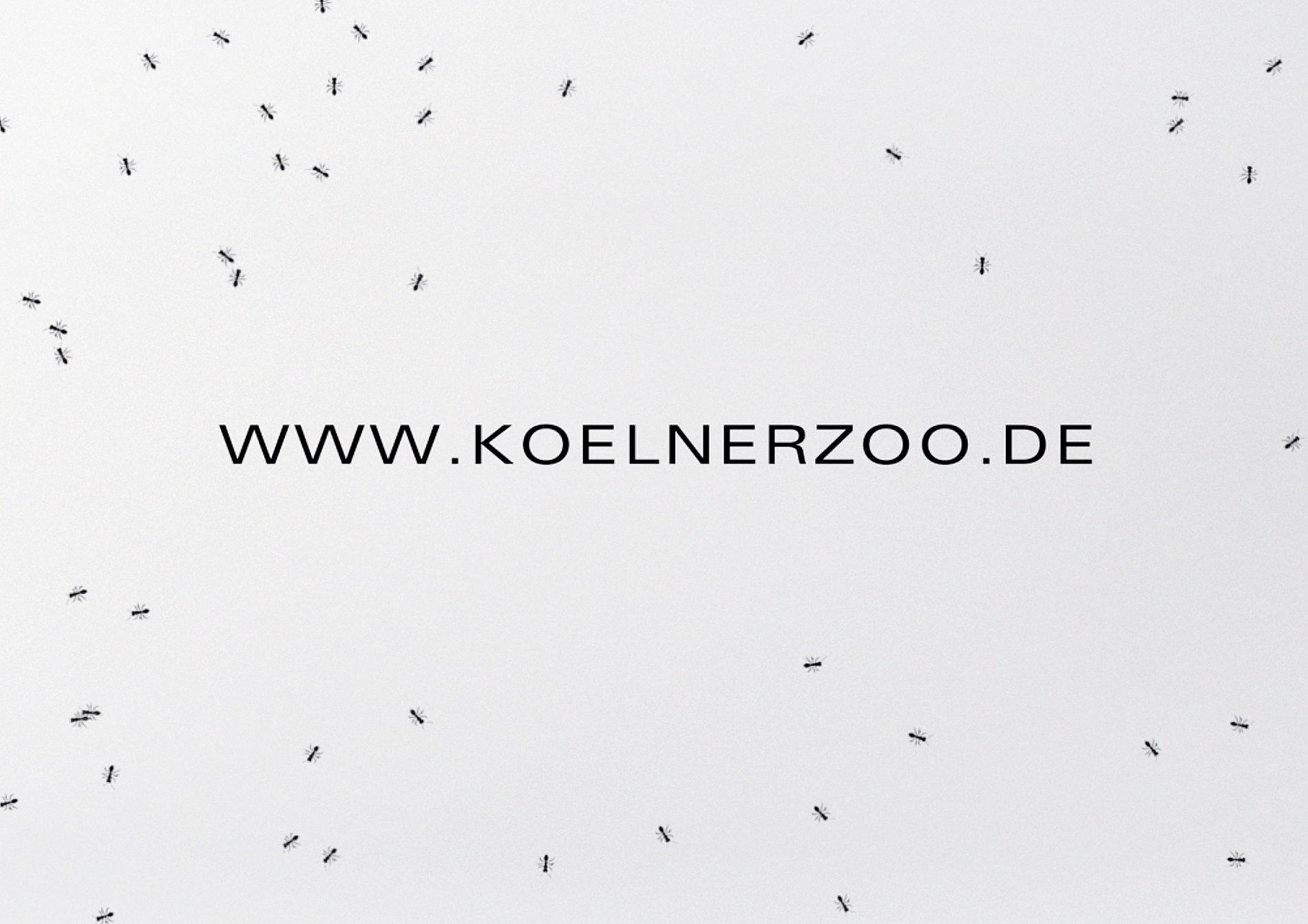 Kölsch beer glass | Red Dot Design Award