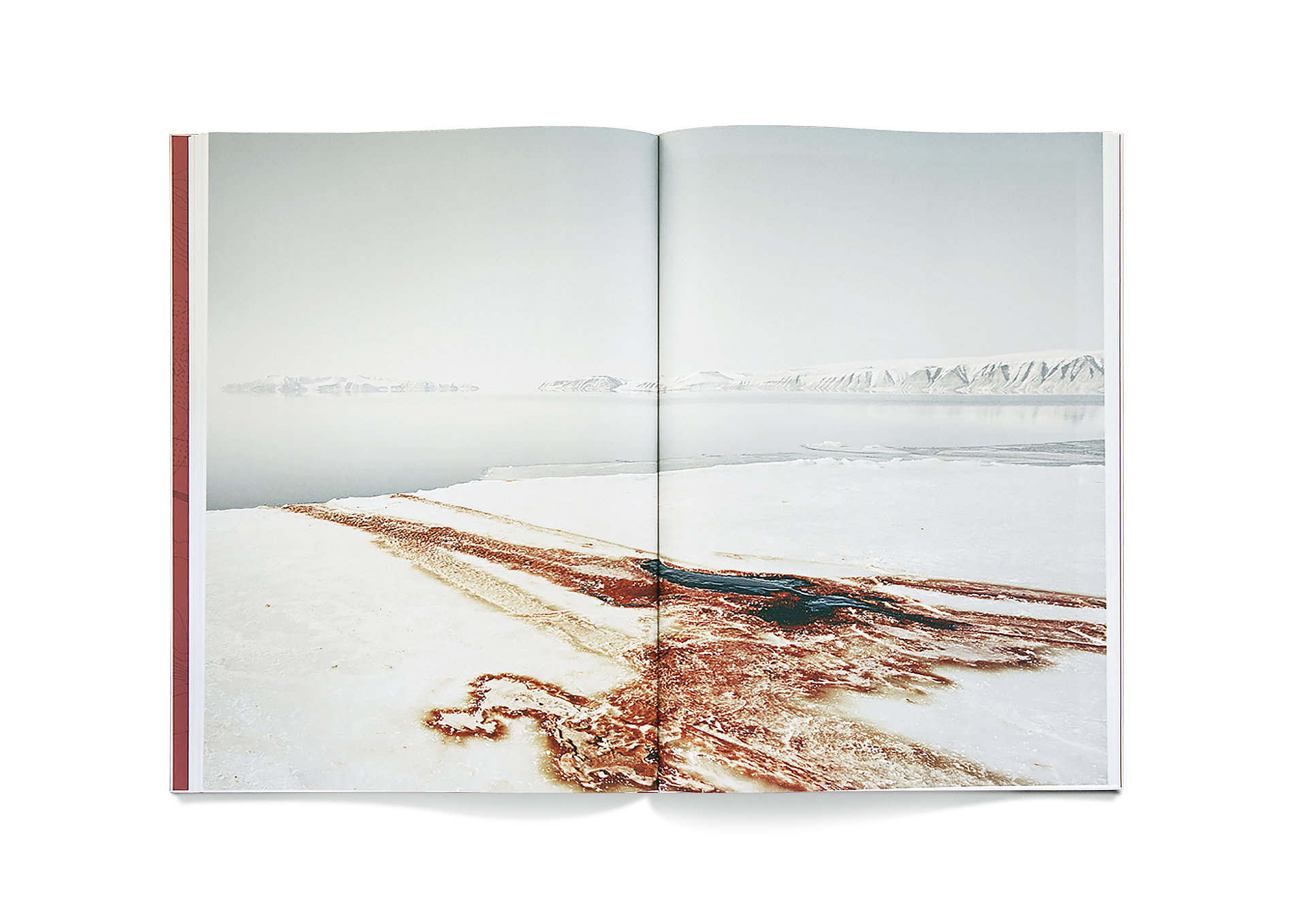Dorte Mandrup – Conditions | Red Dot Design Award