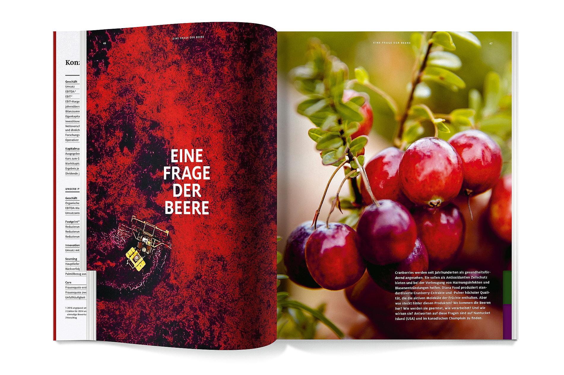 Symrise Annual Report 2017   Red Dot Design Award