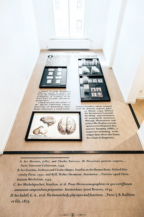 Paper Brains | Red Dot Design Award