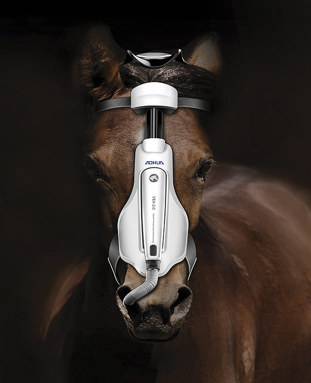 Equine Airway Exercise Endoscopy | Red Dot Design Award
