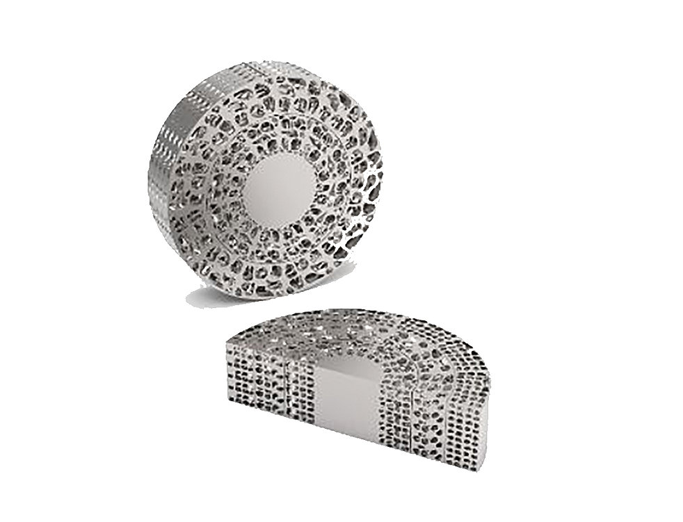 The Biomimetic Interbody Fusion Device | Red Dot Design Award