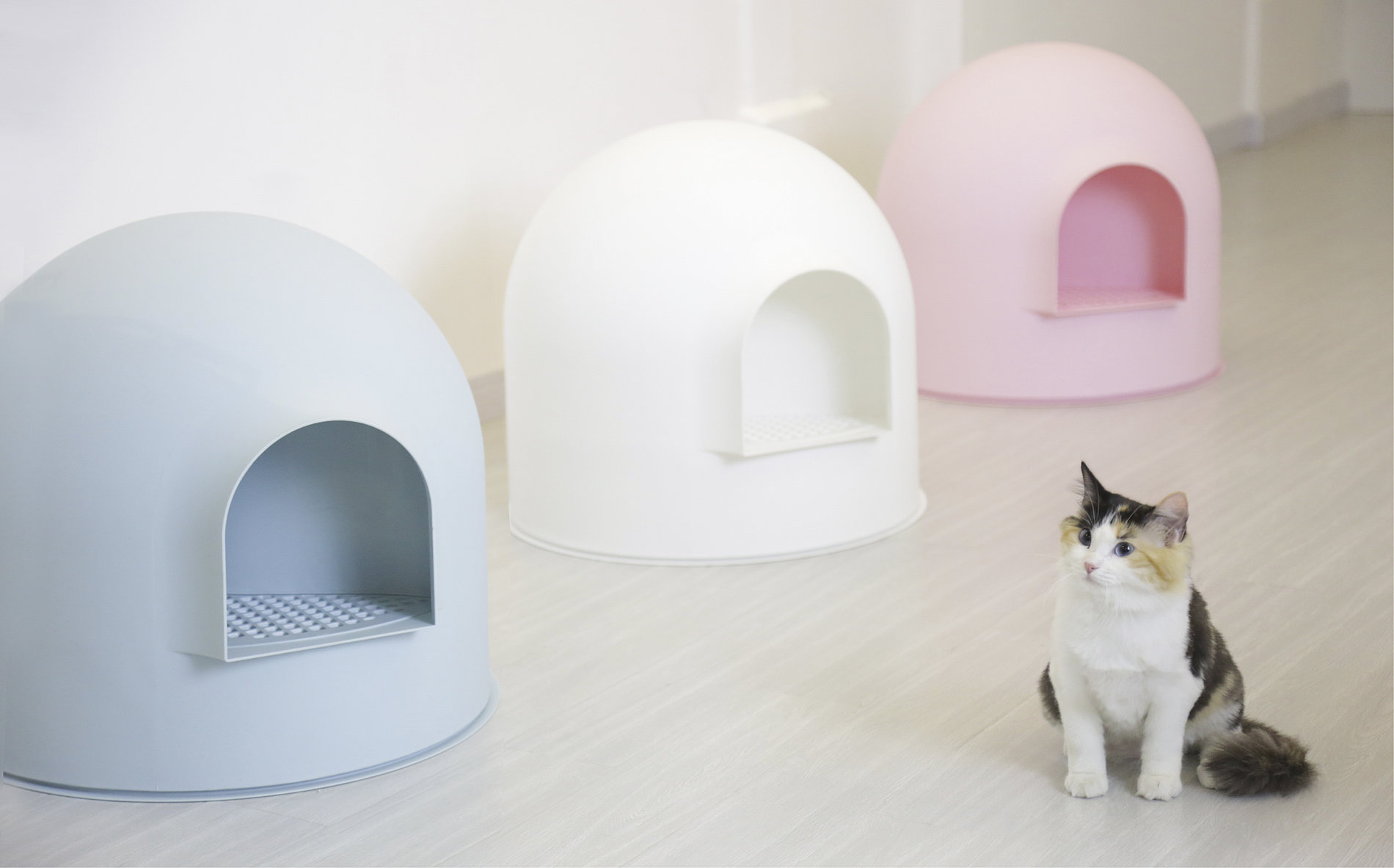 Igloo Cat Litter Box | Red Dot Design Award