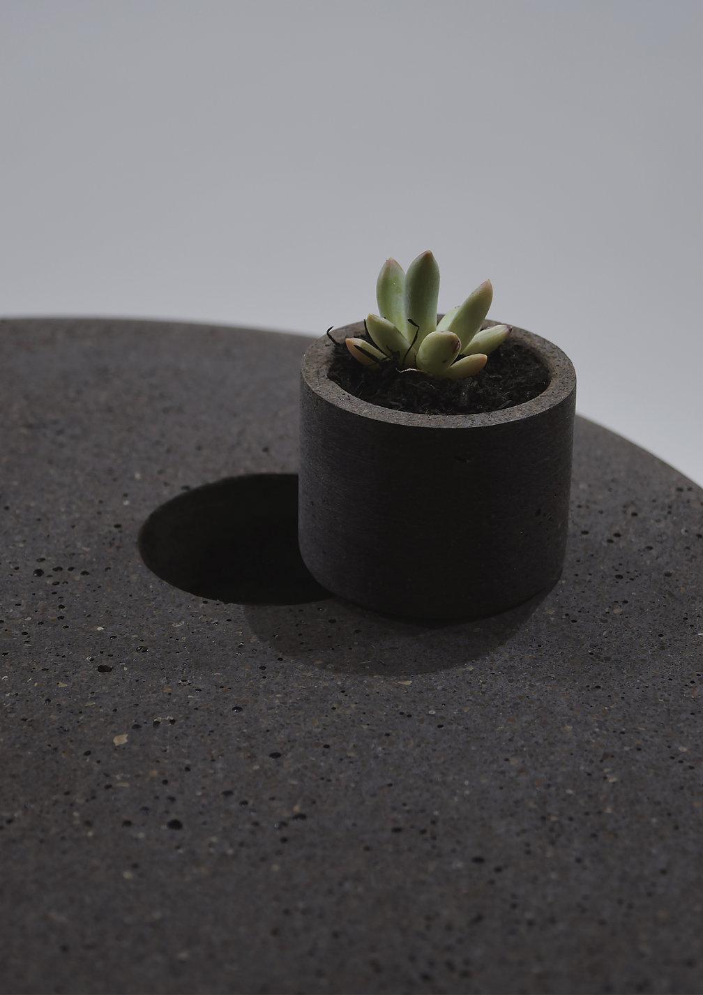 Coffee Bean Table | Red Dot Design Award