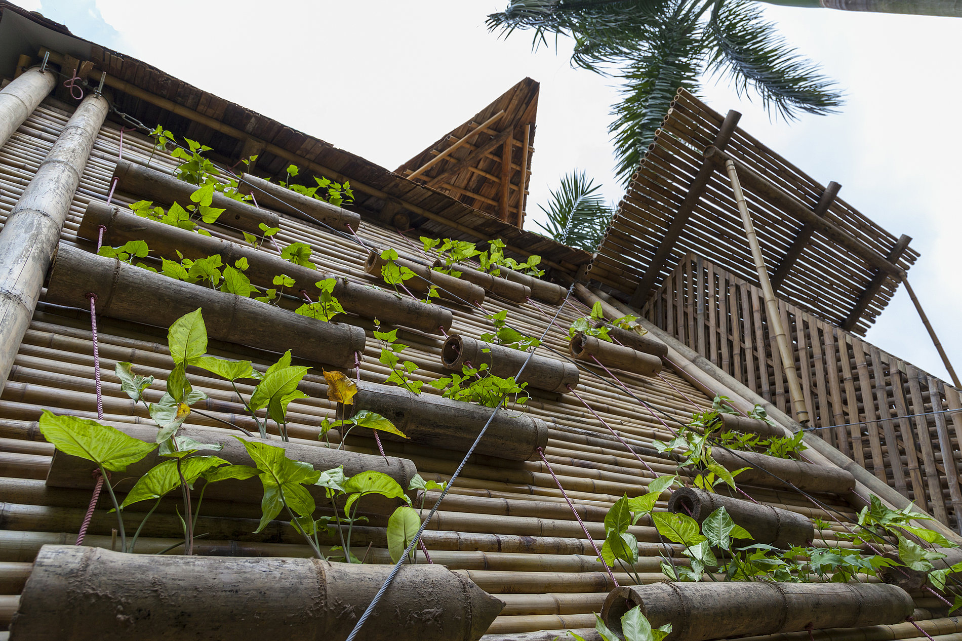 Blooming Bamboo home | Red Dot Design Award