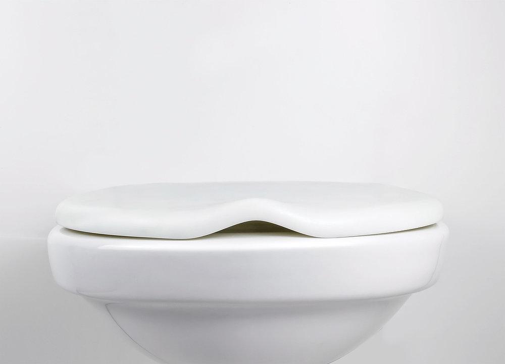 Duckbilled Toilet Lid | Red Dot Design Award