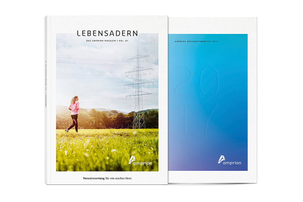 Amprion Annual Report 2017 | Red Dot Design Award