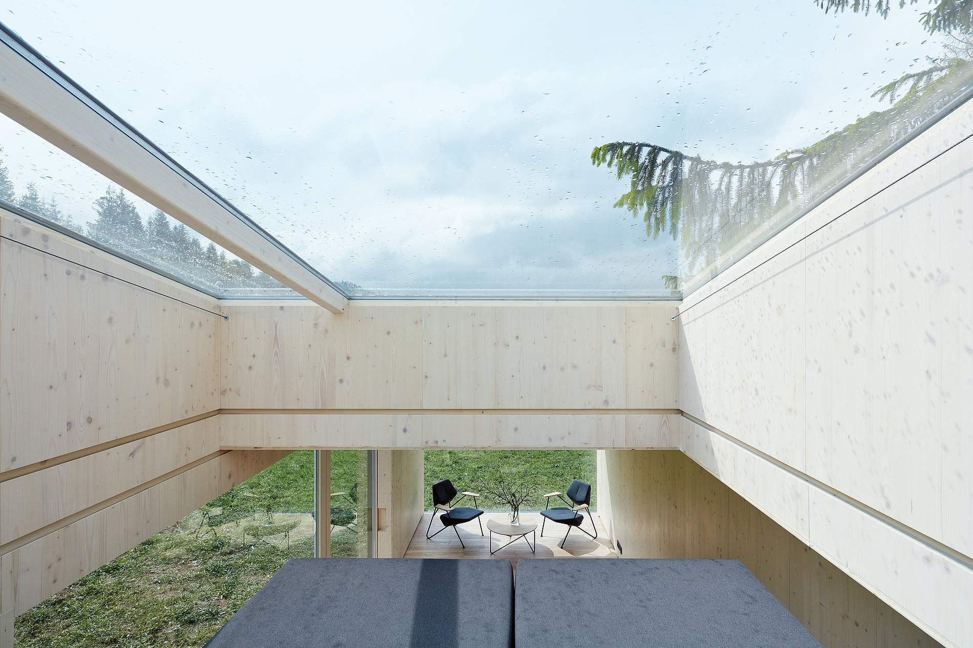Into the Wild | Red Dot Design Award